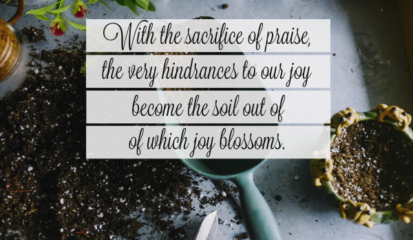 A SACRIFICE OF PRAISE IS A CHOICE OF THE WILL (photo by JEG&Elizabeth George)